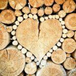 Best Sander for Wood Trim